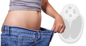 Testsúlycsökkentő program