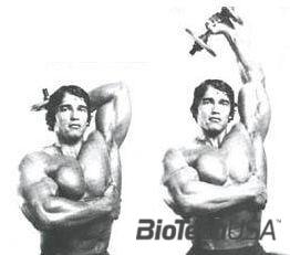 tricepsz gyakorlat